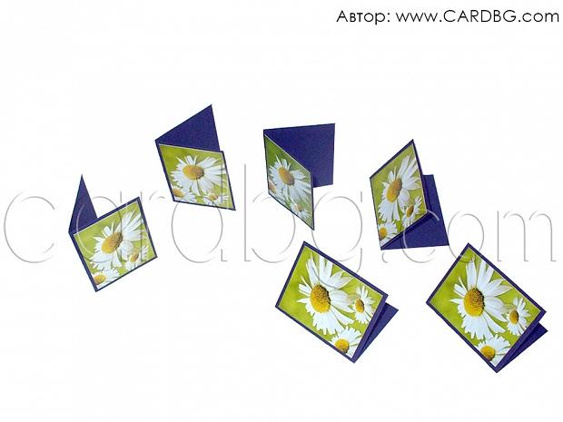Мини картички зелени с бели маргаритки
