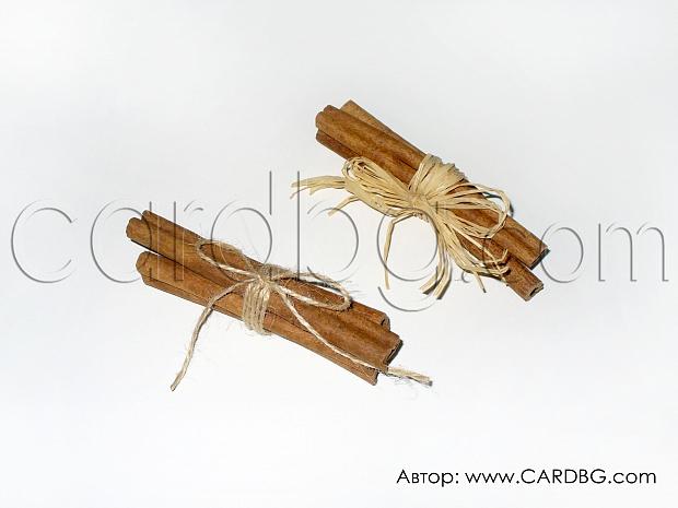 Сноп естествени канелени пръчки с рафия или канап