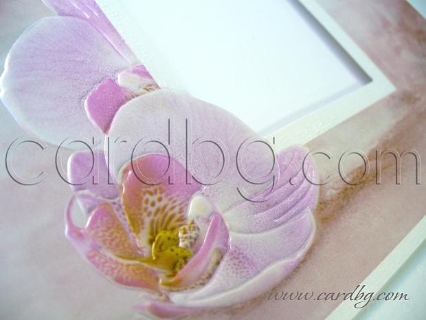 Картичка с орхидеи № 30223